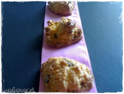 Biscottini al cocco 1