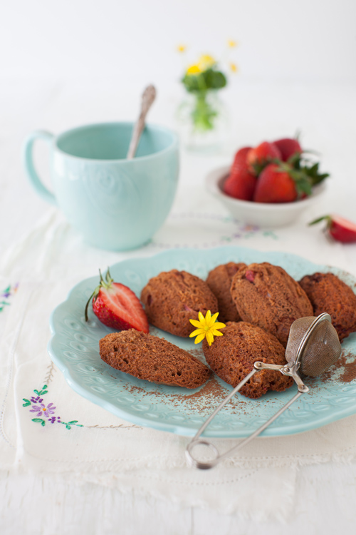 Madeleines al cacao