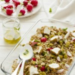 insalata di farro con fave rapanelli - spelt salad with broad beans and radishes