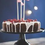 torta al cacao Baileys e mirtilli rossi - Chocolate Baileys and cranberry cake