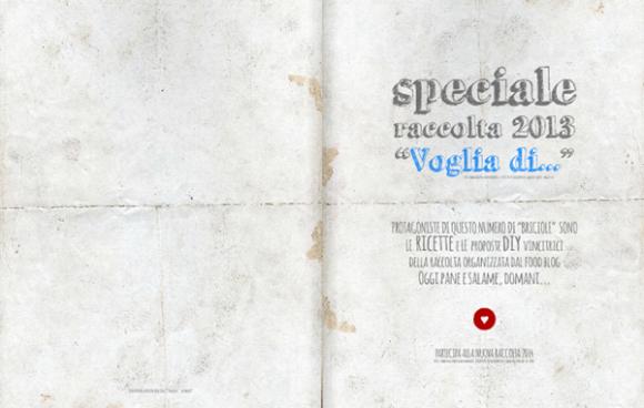 """Briciole speciale raccolta 2013 """"Voglia di..."""""""