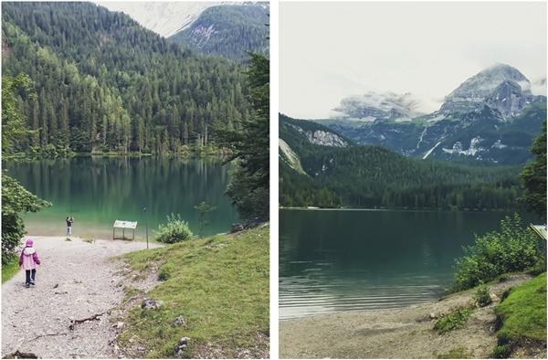 #albeinmalga - Trentino - Val di Non - Coredo - Italia - Lago di Tovel