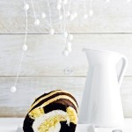 torta rotolo bicolore - roll cake